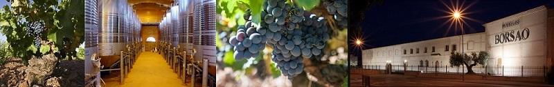 Borsao vinos